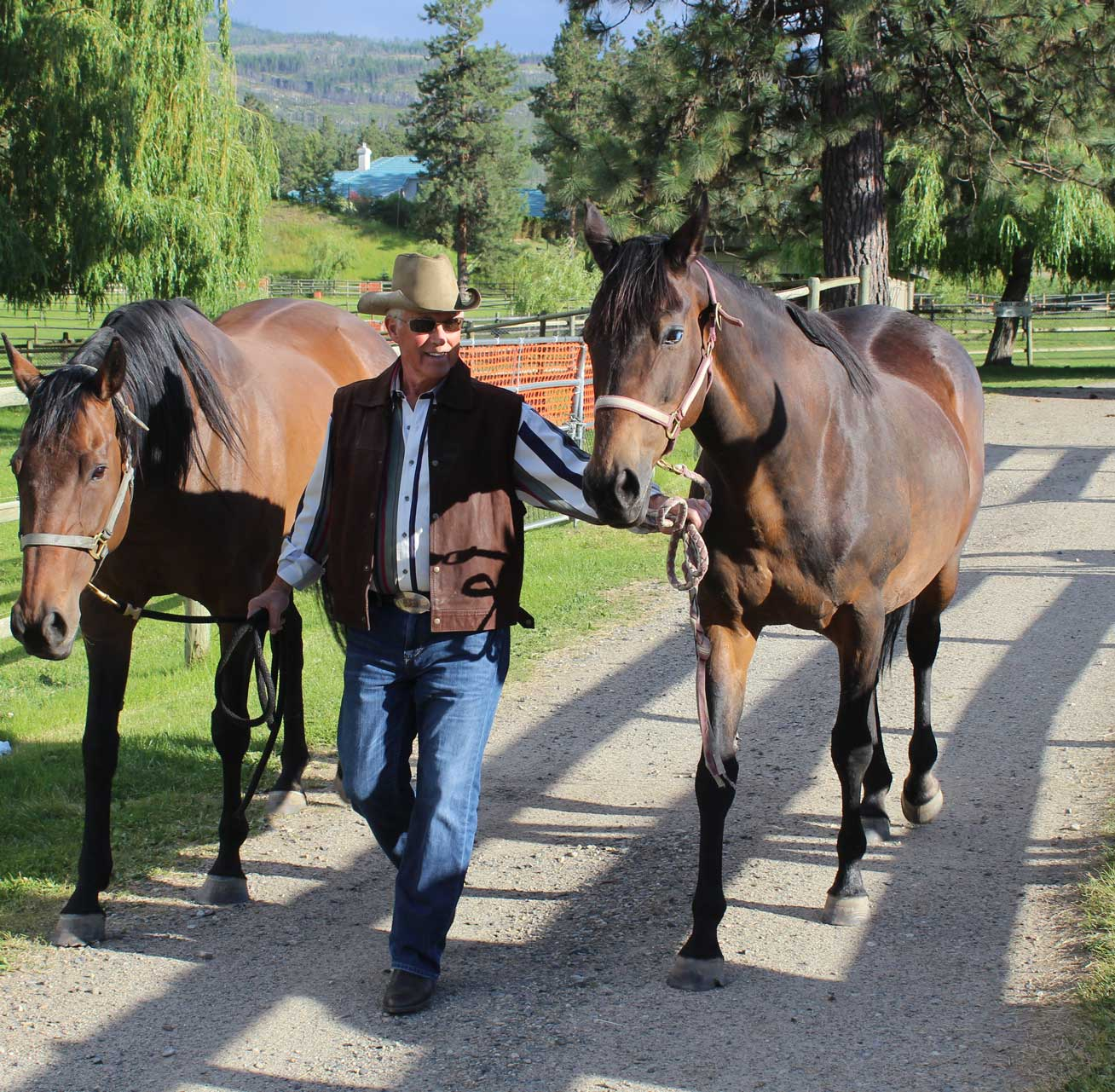 David Pihl Leading Horses Down a Path